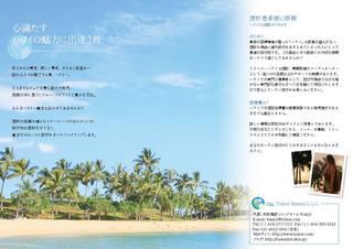 leafletB.jpg